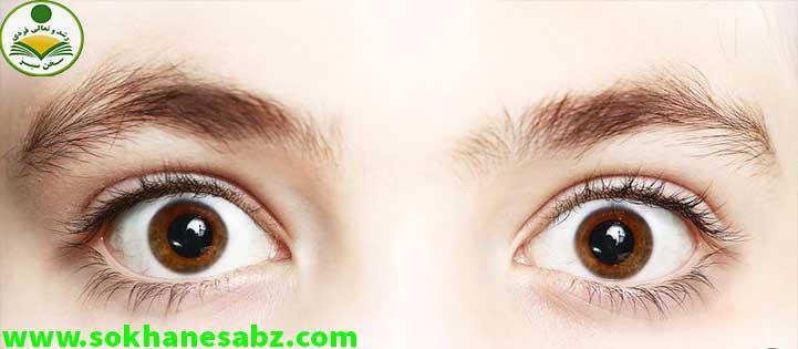 چگونه ارتباط چشمی برقرار کنیم